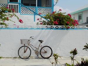 bike_325